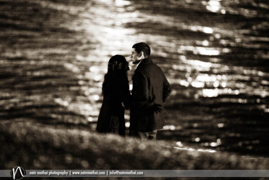 chicago wedding photographer - sijin and jaimy's proposal