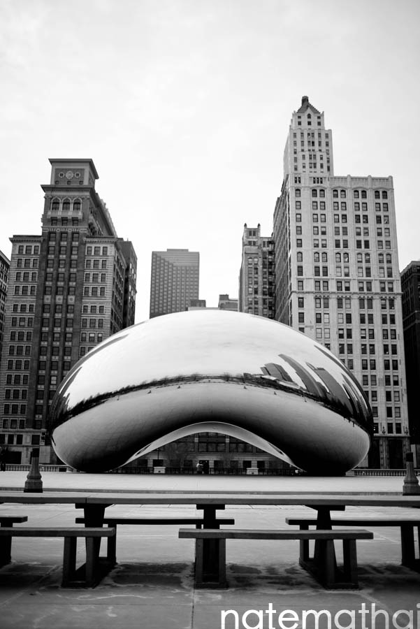 chicago wedding photographer. the cloud gate bean at millenium park in chicago illinois