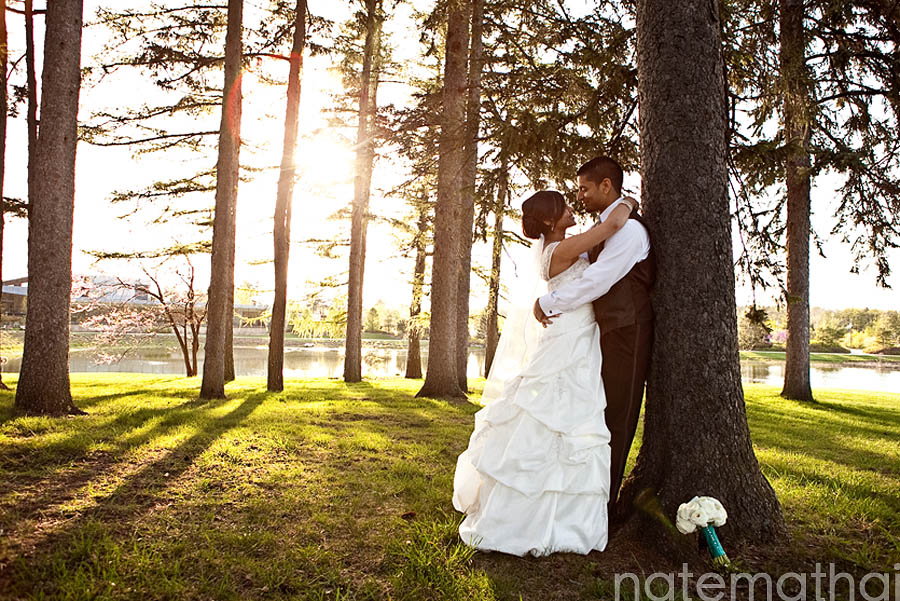 chicago wedding photographer. jaimy and sijin's wedding portraits at the morton arboretum in lisle, illinois