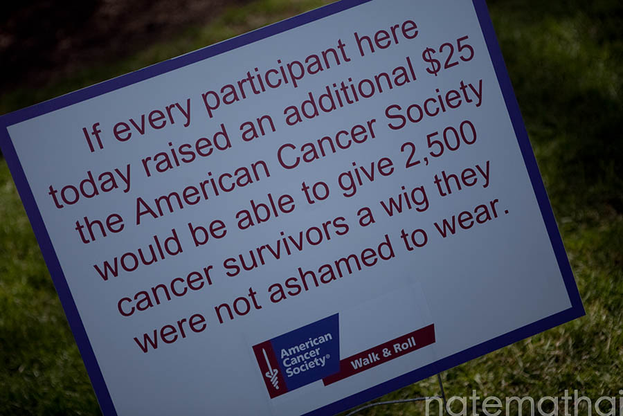 American Cancer Society Walk & Roll 2010 in Chicago, Illinois