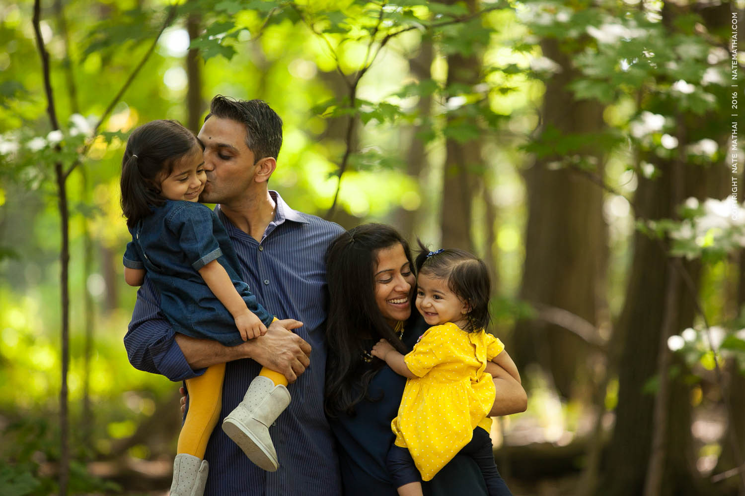 top image for Patel Family Portraits by chicago wedding photographer nate mathai
