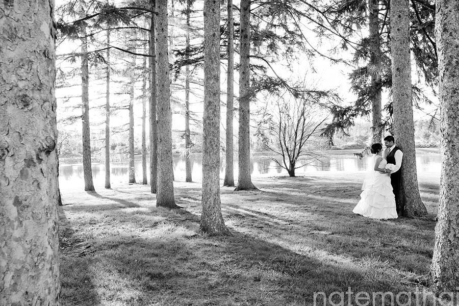top image for Jaimy + Sijin : modern weddings {oak brook, il} by chicago wedding photographer nate mathai